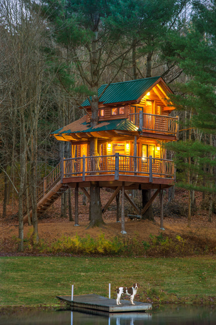 Treehouse-HitherAndThither-2